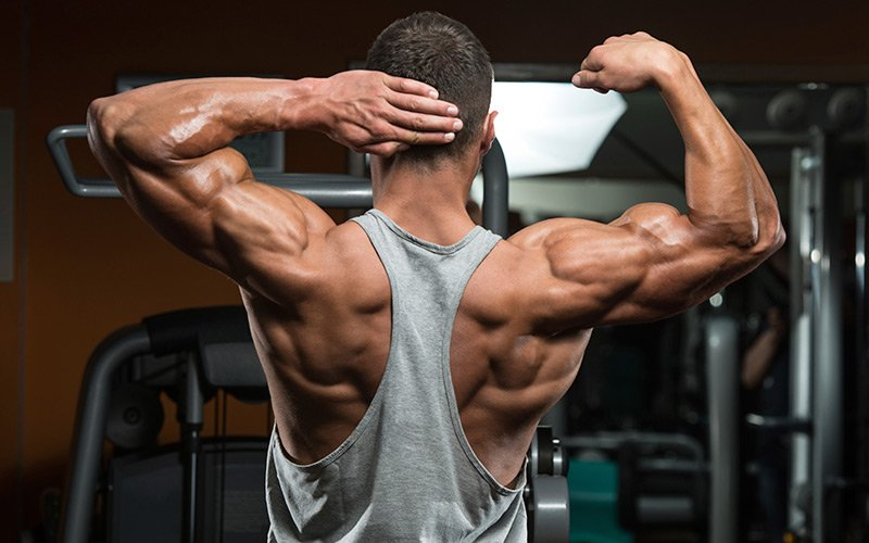 Importance of steroid